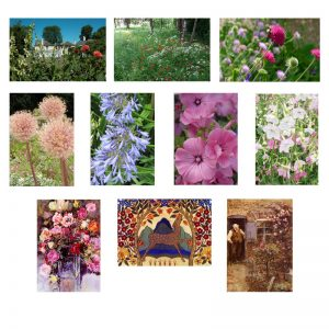 A selection of 10 cards showing flowers at Reveley Lodge.