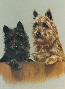 'Cairn Terriers' by Mabel Gear