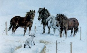 'Four Ponies looking at a Lamb' by Mabel Gear