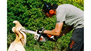 Chainsaw Sculptor by Geoff Hill