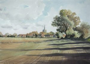 Fields Towards Aldenham
