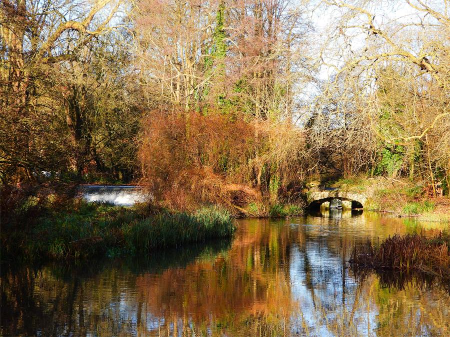 Cassiobury Park by Stephen Danzig
