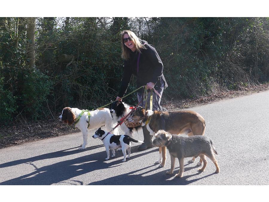 Commended - Dog walker by John McCormack