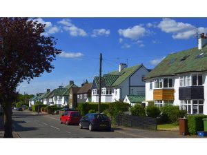 Green roofs - Reddings Avenue by Monika Handke