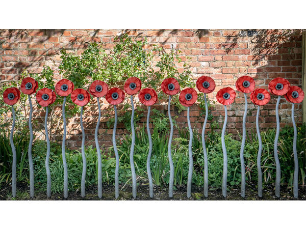 Highly Commended - Cycle Rack, Bushey Rose Garden by Bill Cooper