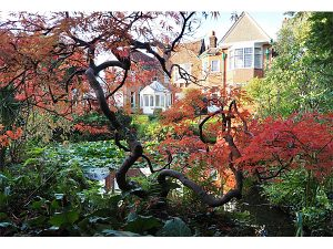 Highly Commended - Old Rectory Garden by Michael Beswick