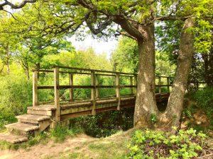 Merry Hill bridge by Louise Lingwood