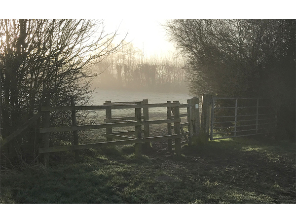 Mist on Merry Hill by John McCormack