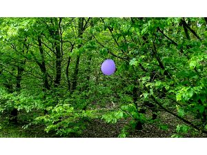 Purple balloon on Merry Hill by Andrew Hextall