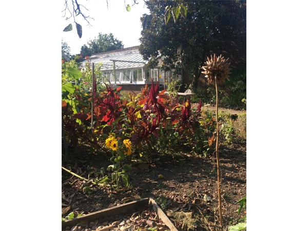 Reveley Lodge garden view by Annie Cooper