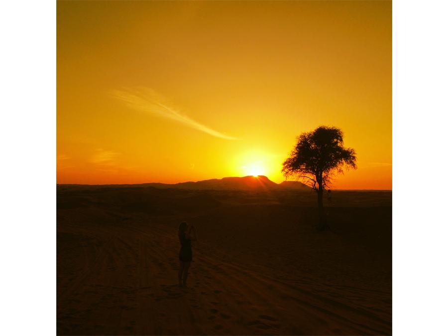 Sunset in The Sinai Desert by Nick Edgeworth